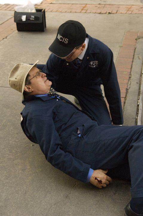 Während Ducky (David McCallum, l.) und Jimmy Palmer (Brian Dietzen, r.) an einem Tatort eine Leiche untersuchen wollen, wird Ducky von einer vermum... - Bildquelle: CBS Television