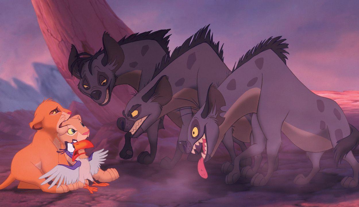 Bei ihren Erkundungen treffen Simba (l.), Nala (2.v.l.) und Zazu (3.v.l.) auf das Hyänen-Trio Shenzi (3.v.r.), Banzai (2.v.r.) und Ed (r.) ... - Bildquelle: Disney