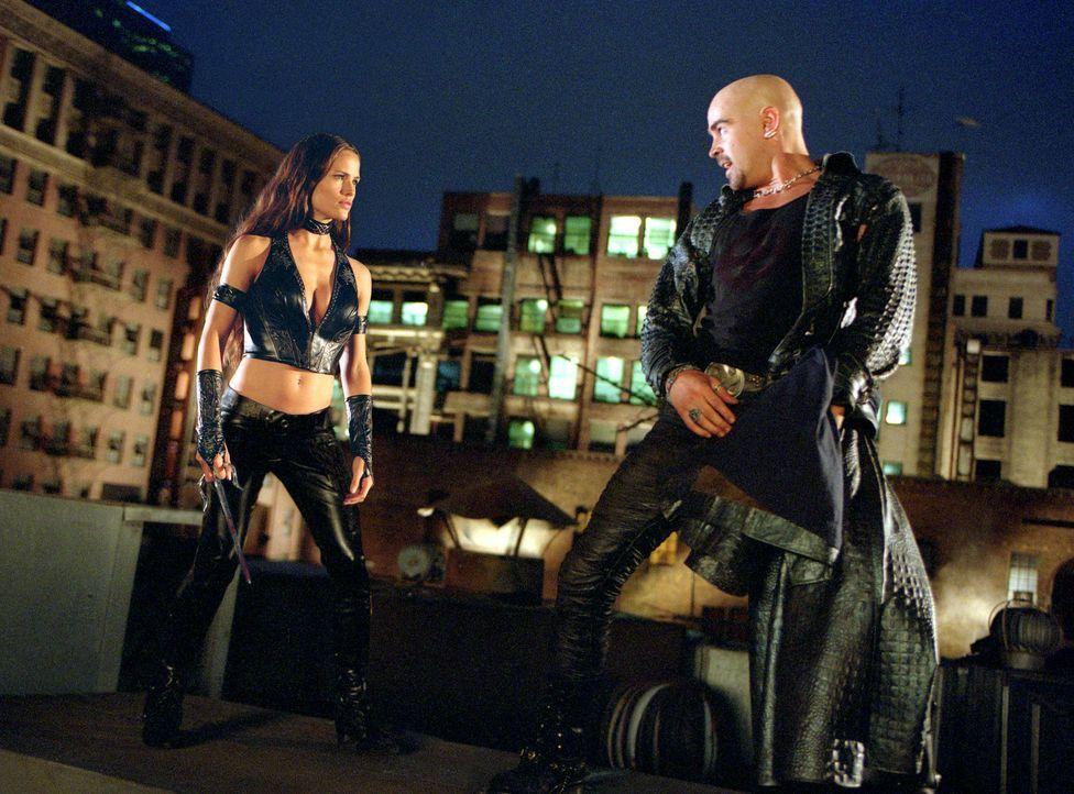 Der Killer Bullseye (Colin Farrell, r.) hat ein neues Opfer im Visier: Elektra (Jennifer Garner, l.) ... - Bildquelle: 2003 Twentieth Century Fox Film Corporation.  All rights reserved.