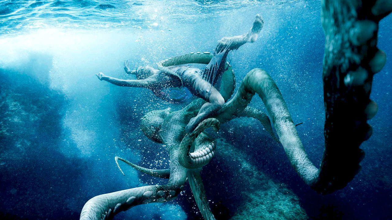 MDM-Kroatien-Octopus-Yuliya-01-SAT1-Oliver-Gast - Bildquelle: SAT.1/Oliver Gast