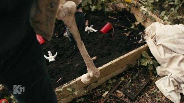 K11 - Die Neuen Fälle - K11 - Die Neuen Fälle - Die Kompostierte Leiche
