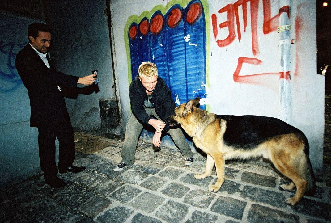Marc (Alexander Pschill, l.) und Rex stoßen bei ihren Ermittlungen auf einen Junkie (Manuel Löffler, M.). Hat er etwas mit dem Mord zu tun? - Bildquelle: Sat.1