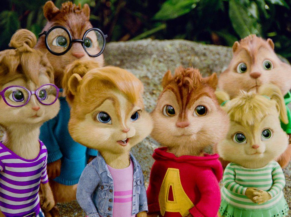 Erleben ein neues Abenteuer: Alvin (3.v.r.), Simon (2.v.l.), Theodore (r.), Jeanette (l.), Eleanor (2.v.r.) und Brittany (3.v.l.) ... - Bildquelle: 2011 Twentieth Century Fox Film Corporation. All rights reserved.