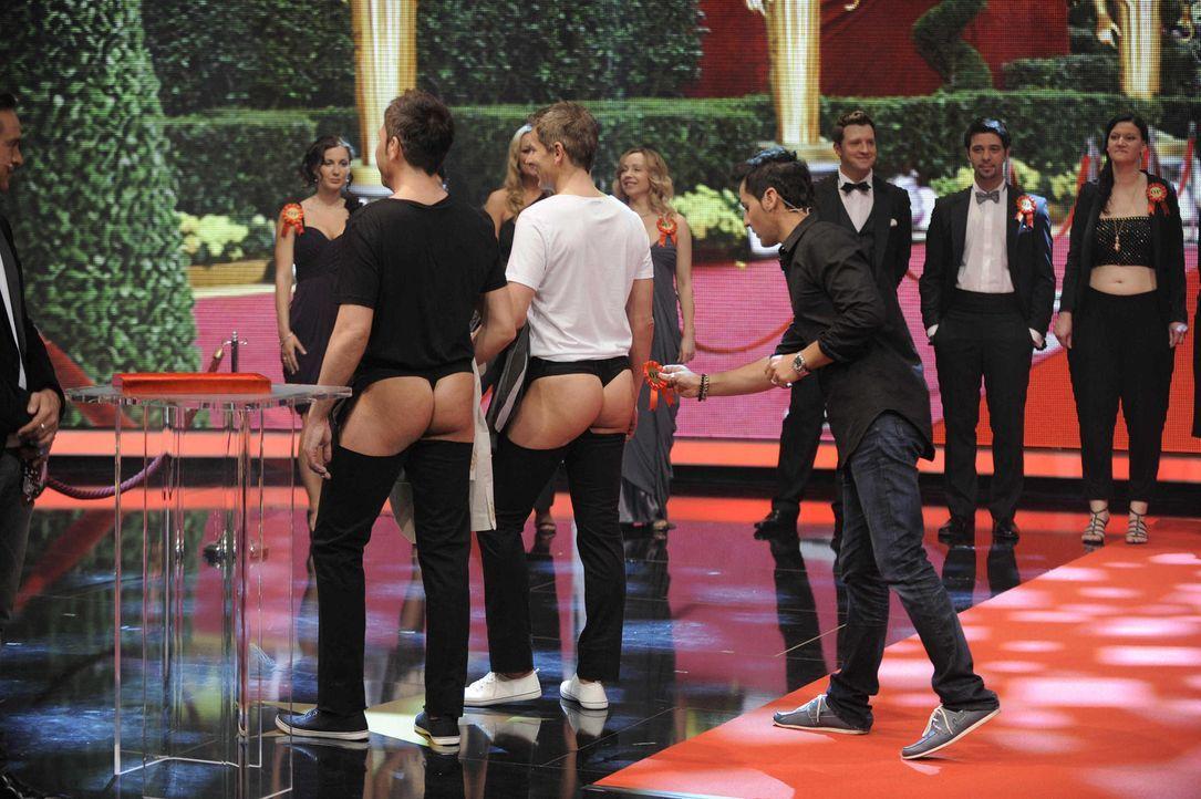 """Mann genug für Brigitte Nielsen? Die kolossale Blondine testet ihren Partner Mattia Dessi (vorne r.) bei """"Mein Mann kann"""" ... - Bildquelle: Oliver S. SAT.1"""