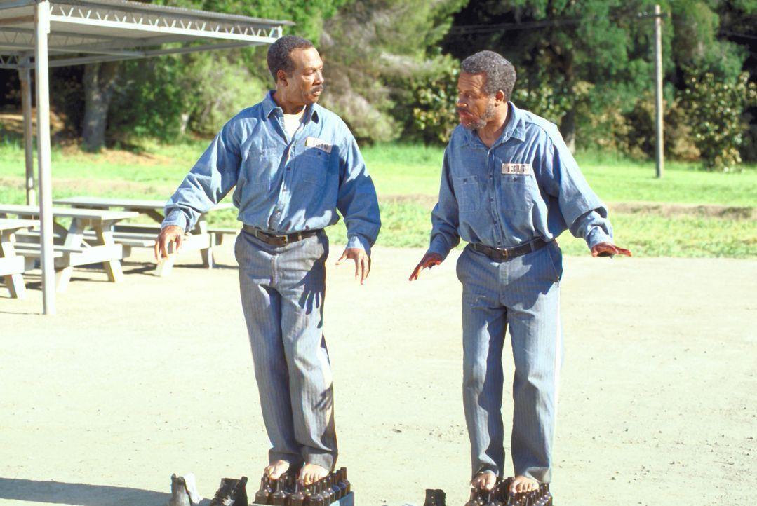 Als ein ungleiches Duo (Eddie Murphy, l. und Martin Lawrence, r.) ihren Coup vermasseln, werden sie unschuldig des Mordes verurteilt. 60 Jahre träu... - Bildquelle: 1999 Universal Studios. All rights reserved