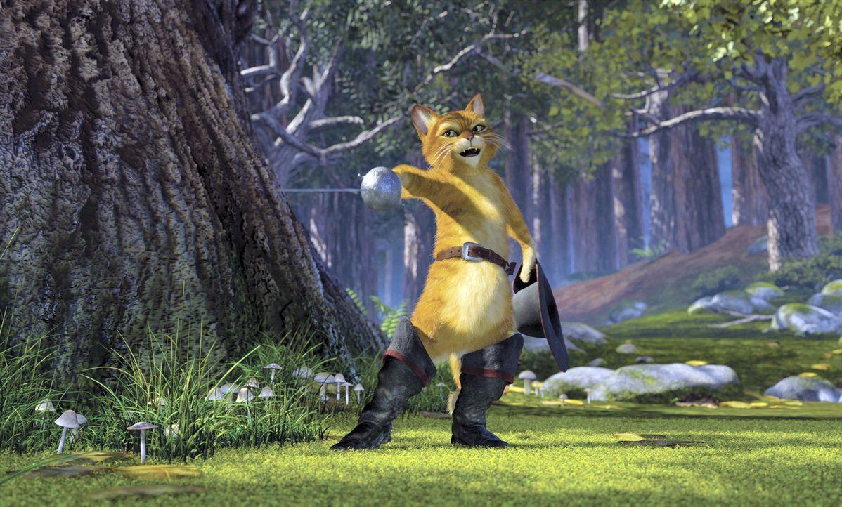 Wie Shrek schon bald befürchtet, sind Fionas Eltern nicht besonders von ihm angetan. Als das erste Dinner im handfesten Streit endet, beschließt d... - Bildquelle: DreamWorks SKG