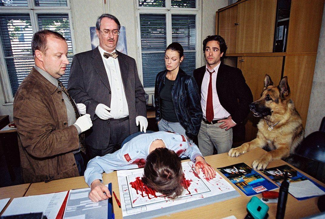 Fritz Kunz (Martin Weinek, l.), Dr. Graf (Gerhard Zemann, 2.v.l.), Niki (Elke Winkens, 2.v.r.) und Marc (Alexander Pschill, r.) untersuchen die Poli... - Bildquelle: Sat.1