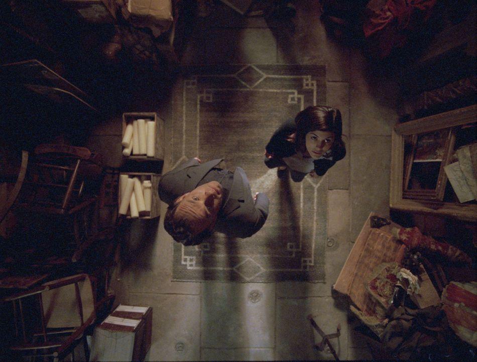 Noch ahnen Robert Langdon (Tom Hanks, l.) und Sophie Neuvet (Audrey Tautou, r.) nicht, dass der Gralsforscher Leigh Teabing, keineswegs ein wahrer F... - Bildquelle: Sony Pictures Television International. All Rights Reserved.
