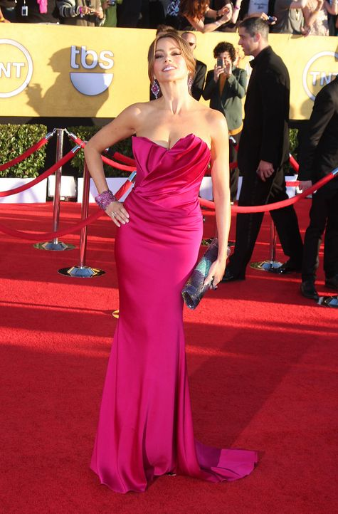 Schauspielerin Sofia Vergara bei den Screen Actors Guild Awards (SAG)  - Bildquelle: Nikki Nelson / WENN.com