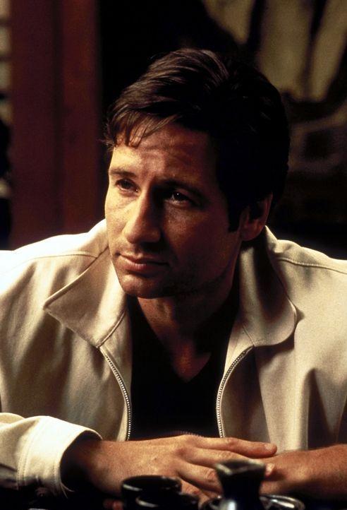 Nachdem er seine Approbation verloren hat, verdingt sich Dr. Eugene Sand (David Duchovny) als Arzt im Drogenkrieg ... - Bildquelle: Buena Vista Pictures