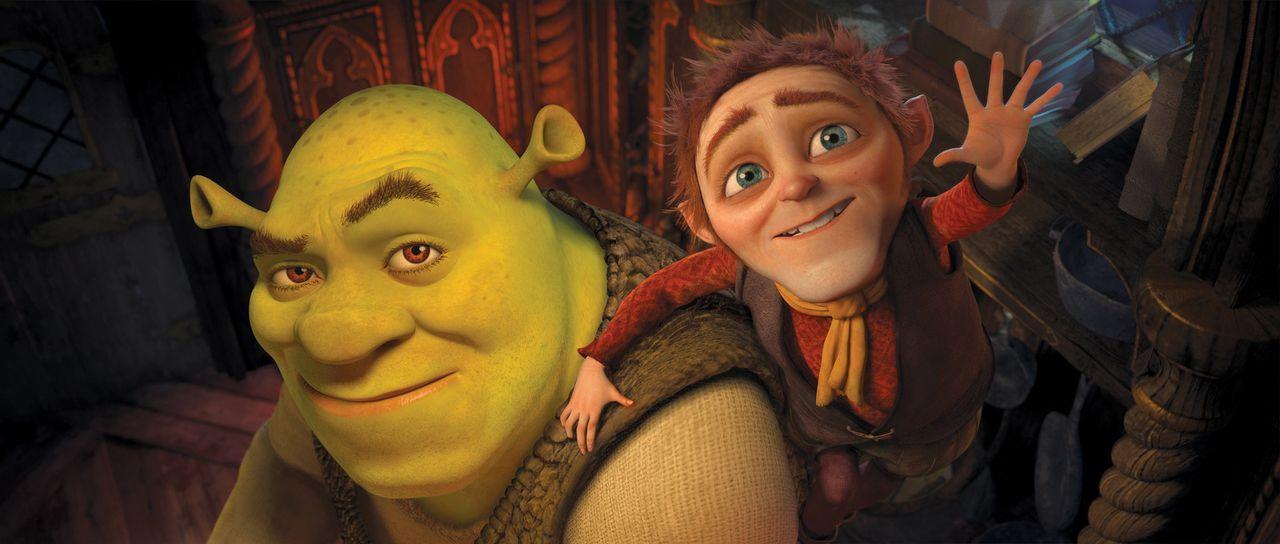 Shrek (l.) hat den Wunsch, sich mal wieder wie ein richtiger Oger zu fühlen und lässt sich dazu überreden, einen Pakt mit dem wortgewandten Rumpe... - Bildquelle: 2012 DreamWorks Animation LLC. All Rights Reserved.