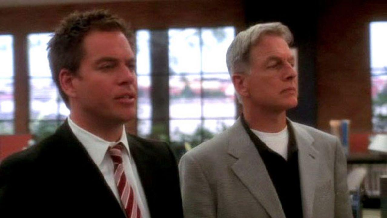 """Jethro Gibbs (Mark Harmon, r.) ignoriert seine Pflichten als stellvertretender Direktor und führt mit """"Tony"""" DiNozzo (Michael Weatherly, l.) die Unt... - Bildquelle: CBS Television"""