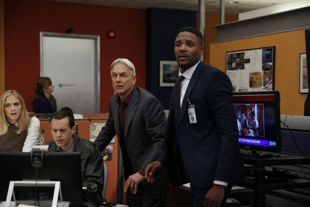 Gibbs (Mark Harmon, 2.v.r.), McGee (Sean Murray, 2.v.l.) und Bishop (Emily Wickersham, l.) befinden sich weiter in enger Zusammenarbeit mit dem FBI... - Bildquelle: Cliff Lipson 2016 CBS Broadcasting, Inc. All Rights Reserved