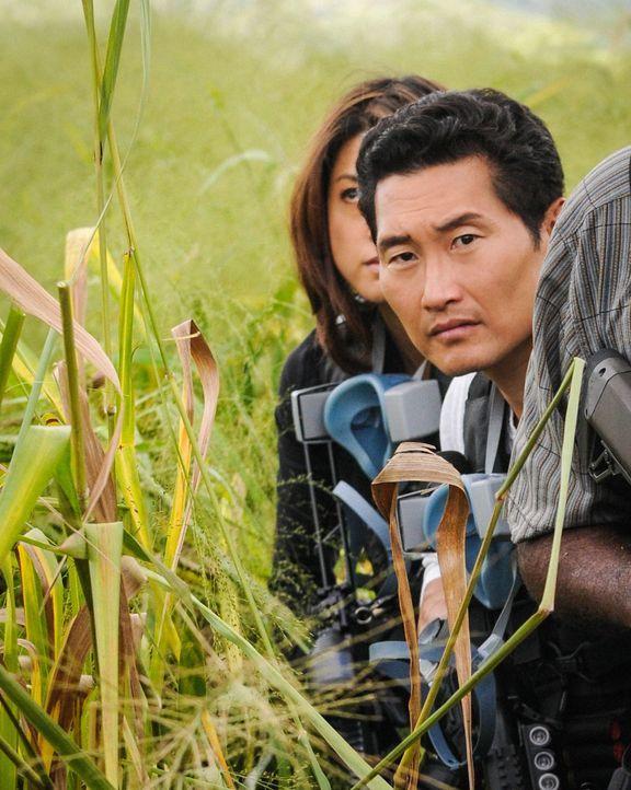 Müssen einen neuen Fall aufdecken, bevor Schlimmeres passiert: Kono (Grace Park, l.) und Chin (Daniel Dae Kim, r.) ... - Bildquelle: Norman Shapiro 2014 CBS Broadcasting Inc. All Rights Reserved.