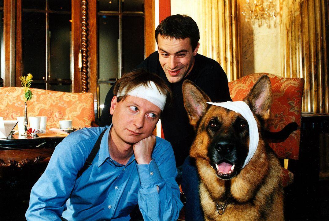 Bei den Ermittlungen im Mordfall Kempinski zeigen Böck (Heinz Weixelbraun, l.) und Rex ganzen Einsatz und geraten in eine gefährliche Situation. K... - Bildquelle: Sat.1