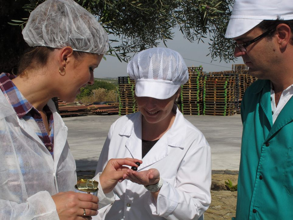 Der große Waren-Check - Wissen, was drin ist: Wo liegt der Unterschied zwischen grünen und schwarzen Oliven? Kristin Recke (l.) versucht das herau... - Bildquelle: SAT.1