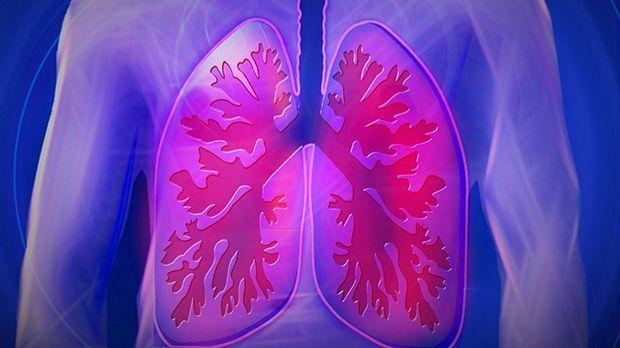 Sauber nach rauchen lunge wieder Rauchstopp lohnt