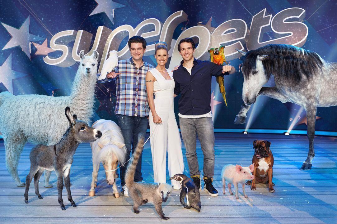 Suchen das talentierteste Haustier der Welt: Michelle Hunziker (M.), Felix Neureuther (r.) und Lutz van der Horst (l.) ... - Bildquelle: Benedikt Müller SAT.1