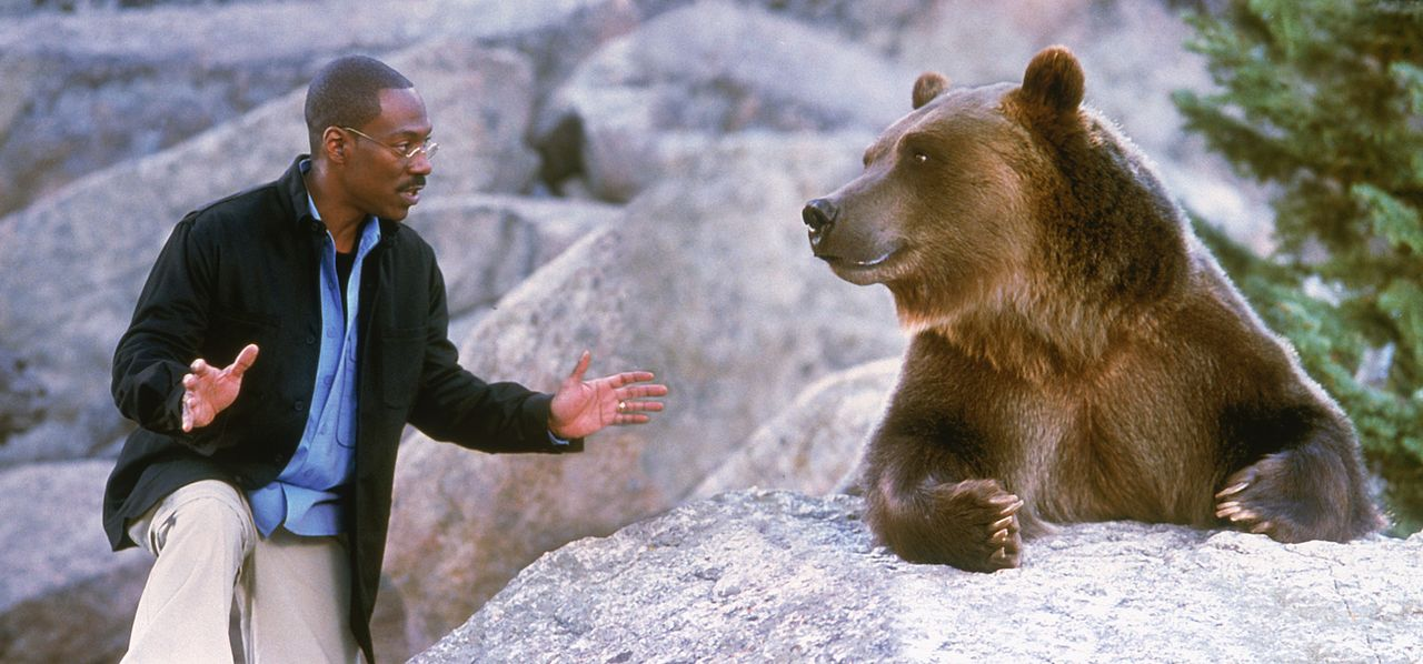 Beste Freunde: Dr. Dolittle (Eddie Murphy) und der gesellige Bär Archie ... - Bildquelle: 1998 Twentieth Century Fox Film Corporation. All rights reserved.