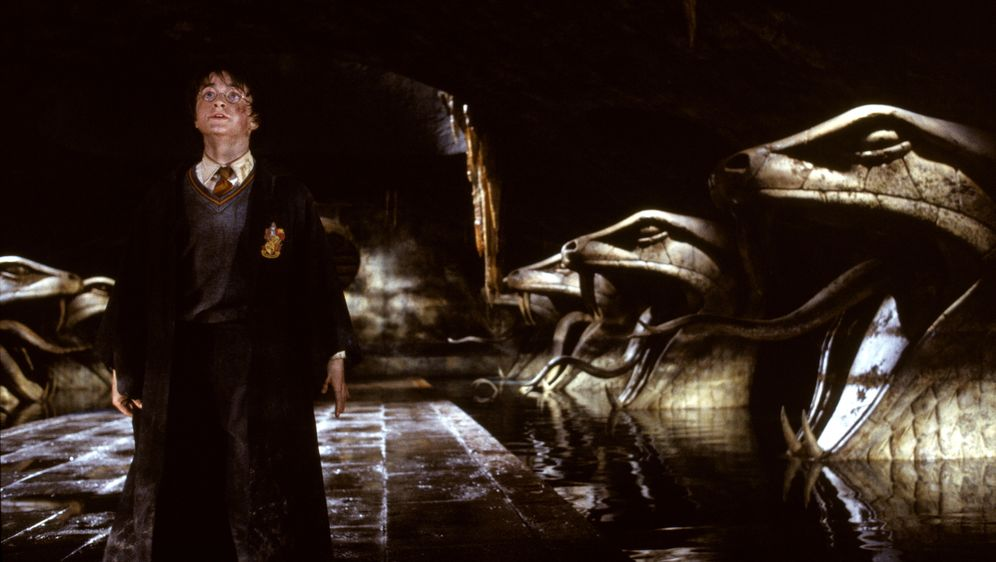Harry Potter und die Kammer des Schreckens - Bildquelle: Warner Bros. Pictures