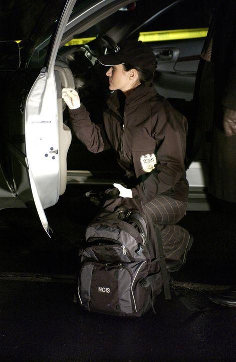 Am Fundort der Leiche findet Kate (Sasha Alexander) Zigarettenreste - ein möglicher Hinweis auf den Mörder von Lambert? - Bildquelle: CBS Television