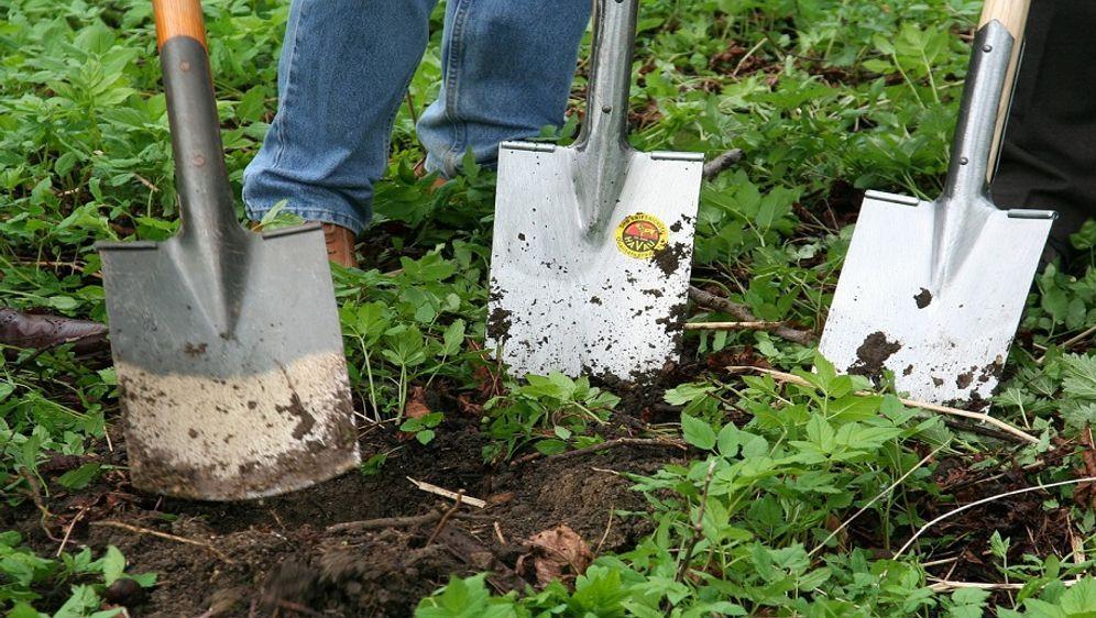 Gartenarbeit Im Januar Neue Vorsatze Sat 1 Ratgeber