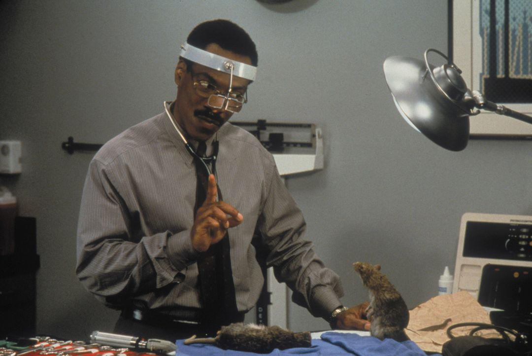 Spricht ein ernstes Wörtchen mit einer aggressiven Ratte: Tierarzt Dr. Dolittle (Eddie Murphy, l.) ... - Bildquelle: 1998 Twentieth Century Fox Film Corporation. All rights reserved.
