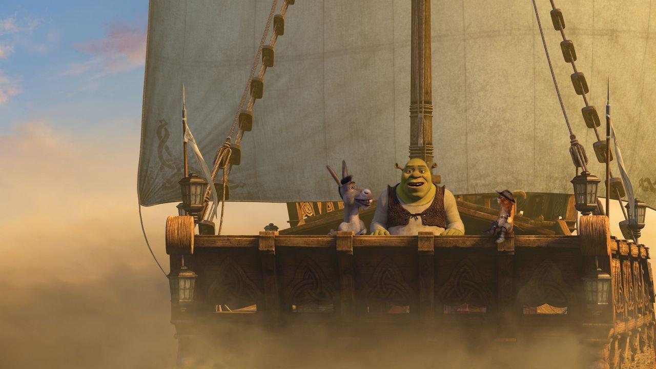 Auf eine lange Reise begeben sich Shrek und seine Freunde, weil das grüne Sumpfmonster partout nicht König werden will, und deshalb einen passenden... - Bildquelle: TM &   2007 Dreamworks Animation LLC