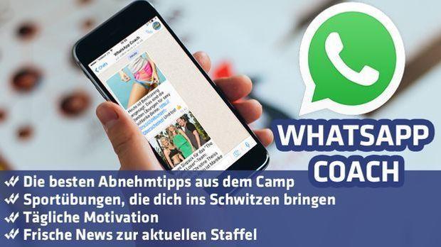 WhatsCoach _Teaserbild3 - Kopie2