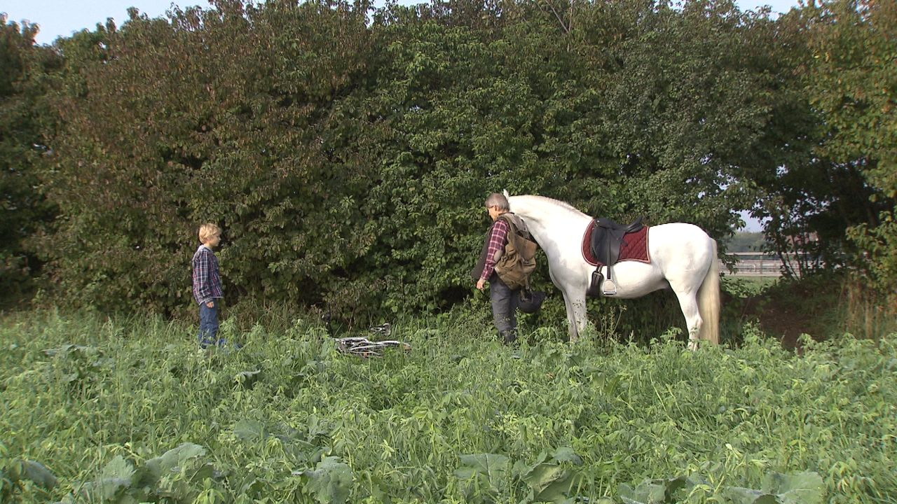 Der-Pferdeflüsterer42 - Bildquelle: SAT.1