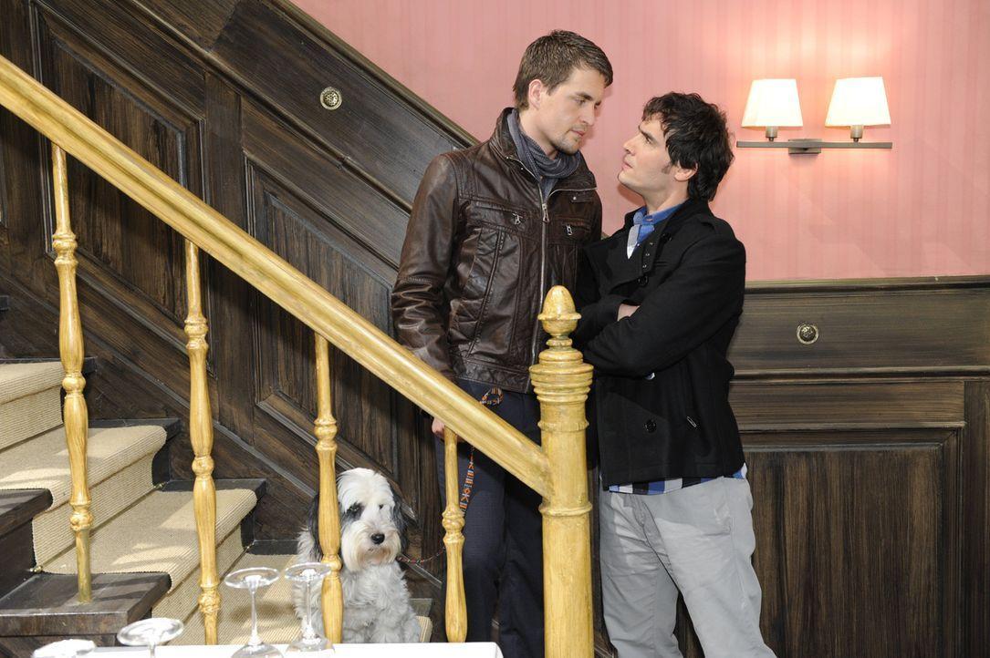 Lars (Alexander Klaws, l.) realisiert, dass zwischen Mia und Alexander (Paul Grasshoff, r.) Gefühle im Spiel sind ... - Bildquelle: SAT.1