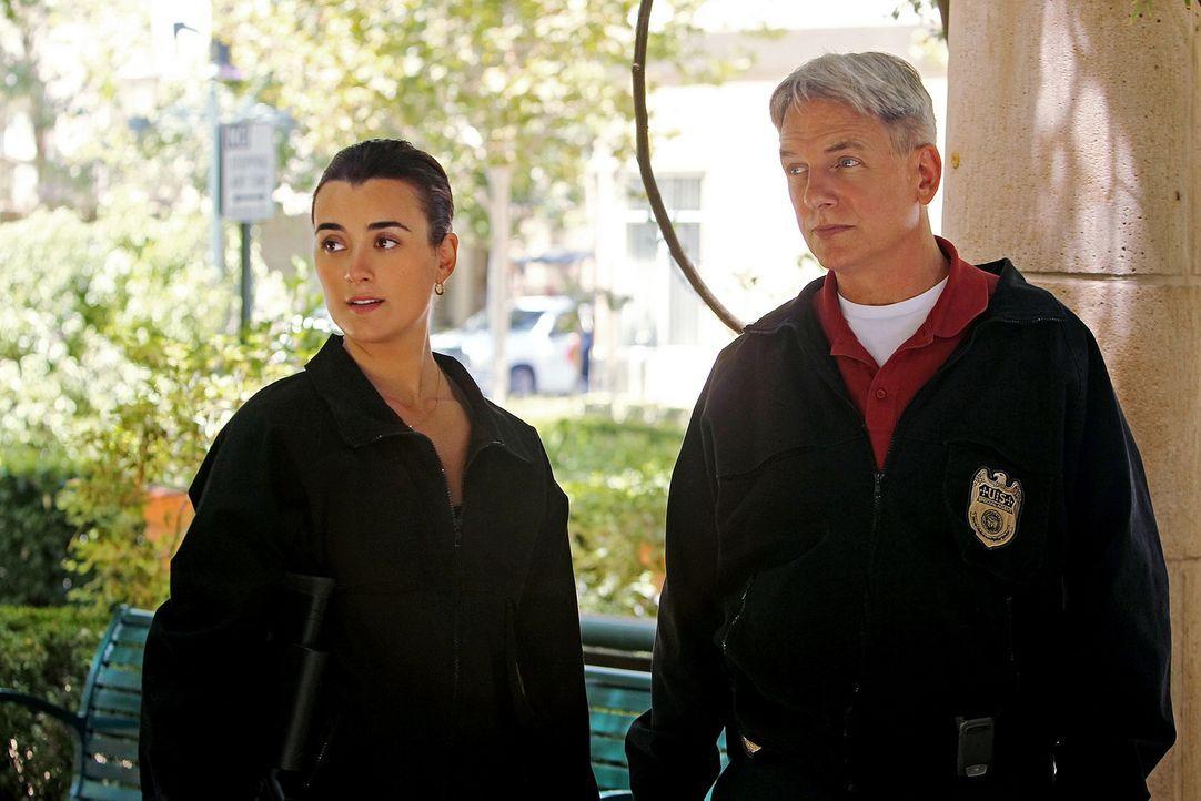 Ein neuer Fall beschäftigt Gibbs (Mark Harmon, r.) und Ziva (Cote de Pablo, l.) ... - Bildquelle: CBS Television