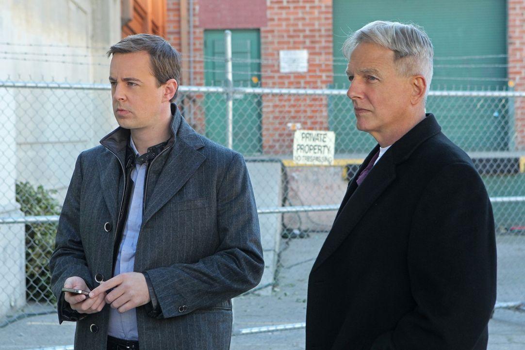 Ein neuer Fall wartet auf Gibbs (Mark Harmon, r.) und McGee (Sean Murray, l.) ... - Bildquelle: CBS Television
