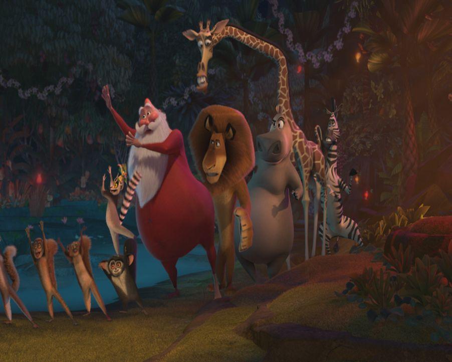 Es weihnachtet auch auf Madagaskar. Als der Weihnachtsmann (M.) über der Insel mit seinem Schlitten abstürzt und dabei sein Gedächtnis verliert, lie... - Bildquelle: United International Pictures (UIP)