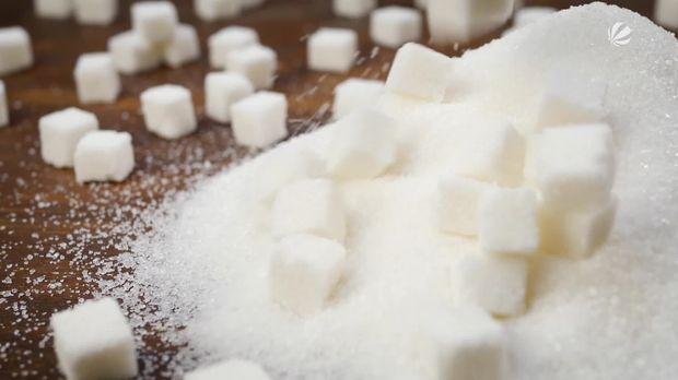 Frühstücksfernsehen - Frühstücksfernsehen - Mit Zucker Plastikmüll Vermeiden