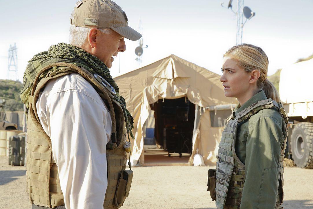 Als sich herausstellt, dass der Mord an einem Marinesoldaten mit einer Terrorgruppe in Verbindung steht, reisen Gibbs (Mark Harmon, l.) und Bishop (... - Bildquelle: Greg Gayne CBS Television