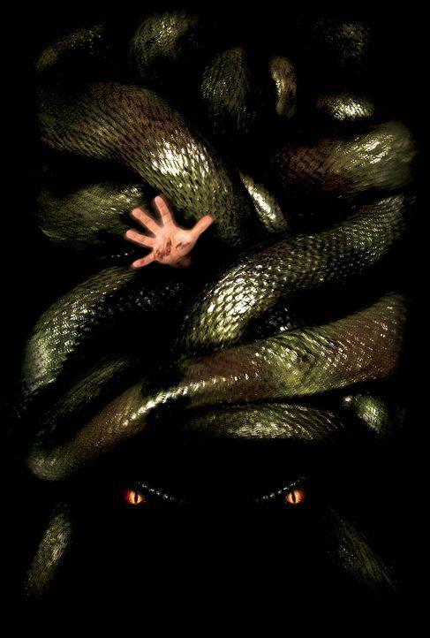 Anacondas: Die Jagd nach der Blut-Orchidee - Bildquelle: Sony Pictures Television International. All Rights Reserved.