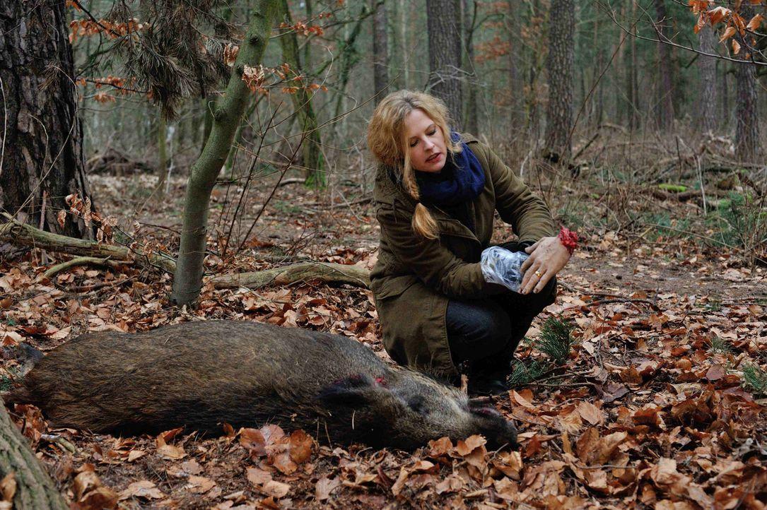 Um einen Mord aufzudecken, schreckt Josephine (Diana Amft) vor nichts zurück ... - Bildquelle: Hardy Spitz SAT.1