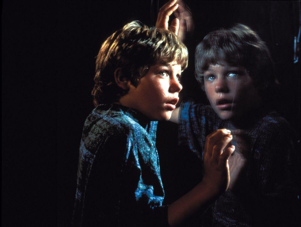 Der junge, in zerrütteten Verhältnissen aufgewachsene Jesse (Jason James Richter) freundet sich in einem Vergnügungspark mit dem Killerwal Willy an... - Bildquelle: Warner Bros.
