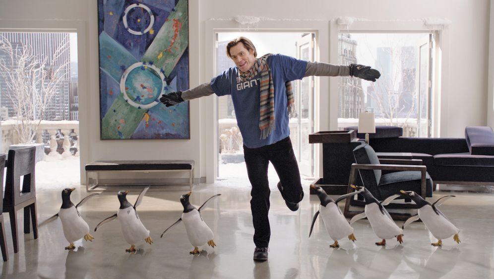 Mr. Poppers Pinguine - Bildquelle: 2011 Twentieth Century Fox Film Corporation. All rights reserved.