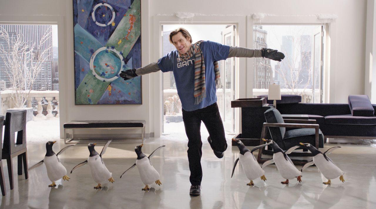 Ein Erbe, das es in sich hat: Tom Popper (Jim Carrey) ... - Bildquelle: 2011 Twentieth Century Fox Film Corporation. All rights reserved.