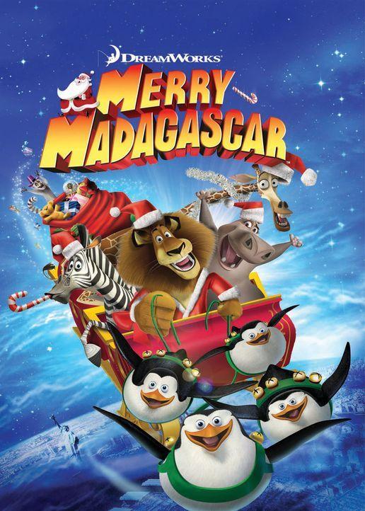 Es weihnachtet ... auch auf Madagaskar. Als der Weihnachtsmann über der Insel mit seinem Schlitten abstürzt und dabei sein Gedächtnis verliert, lieg... - Bildquelle: United International Pictures (UIP)