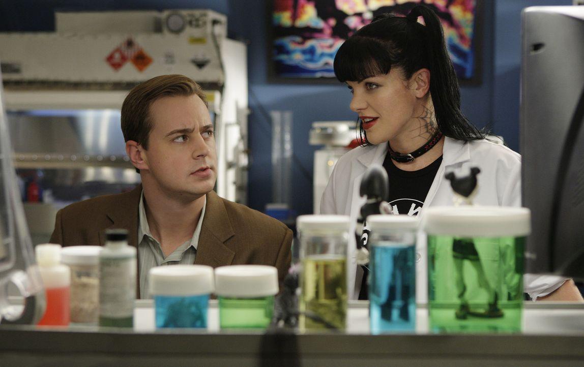 Ein Mörder muss gefasst werden: Abby (Pauley Perrette, r.) und McGee (Sean Murray, l.) bei ihren Ermittlungen ... - Bildquelle: CBS Television