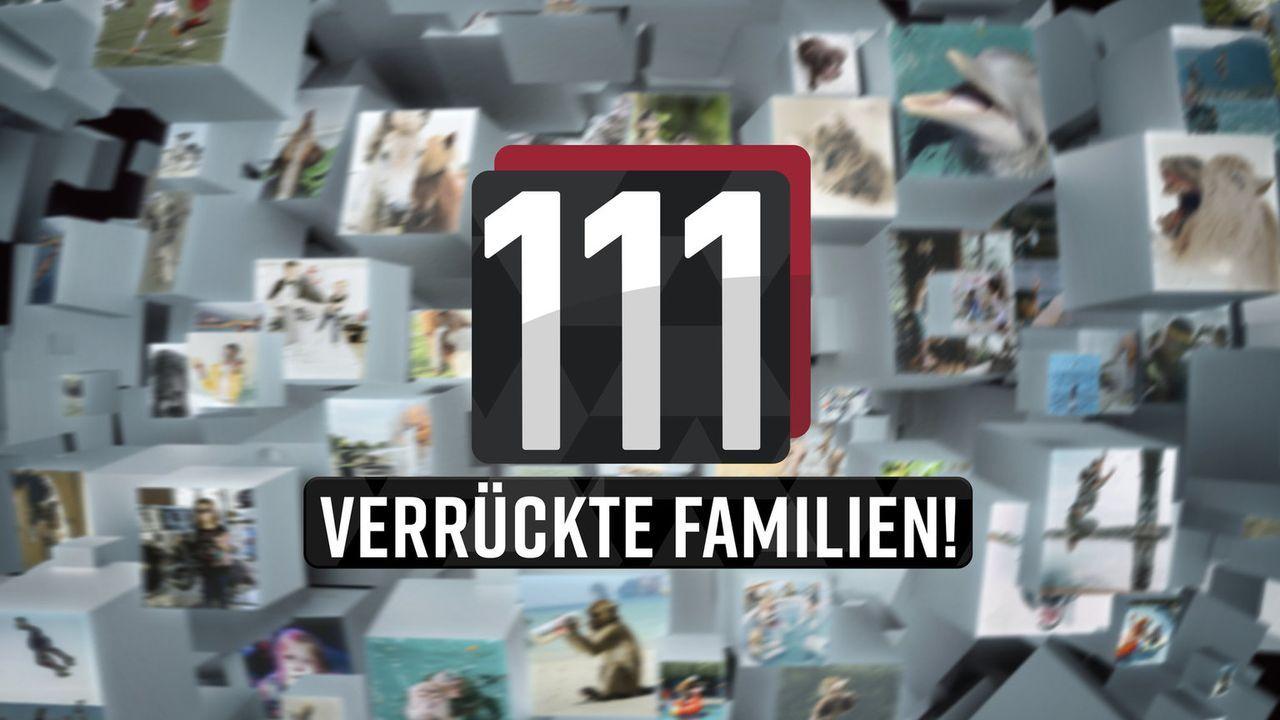 111 verrückte Familien - Logo - Bildquelle: SAT.1