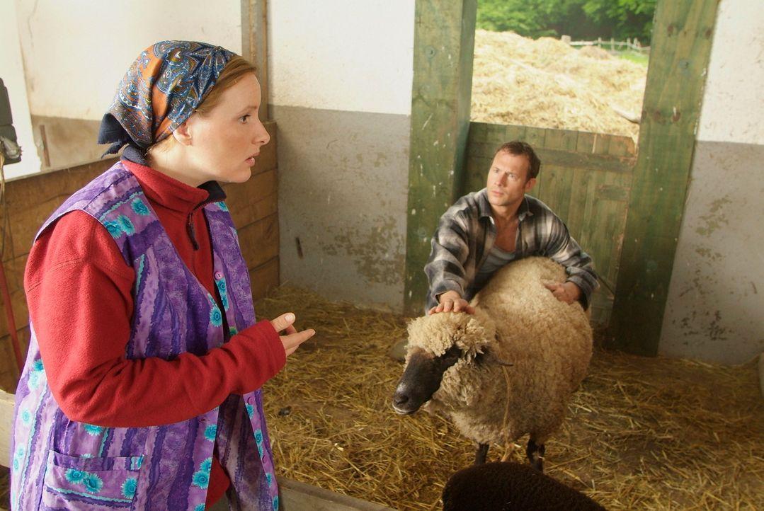 Ein Bauer und sein Lieblings-Schaf - ein wirklich schönes Paar, aber wehe sie werden erwischt! (Hanno Friedrich, l.,  Nina Vorbrodt, r.) - Bildquelle: Guido Engels Sat.1