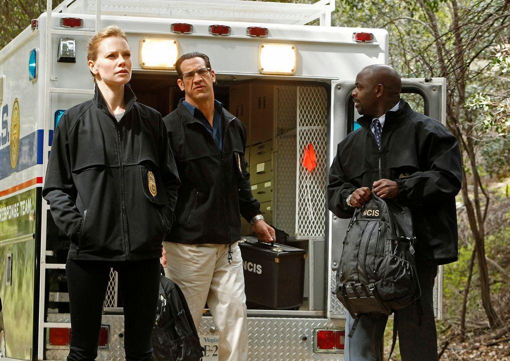 Wollen den Hafenmörder zur Strecke bringen: NCIS Special Agent Earl Stark (Sarah Jane Morris, l.), NCIS Special Agent Sam Hanna (Matthew Willig, M.)... - Bildquelle: CBS Television