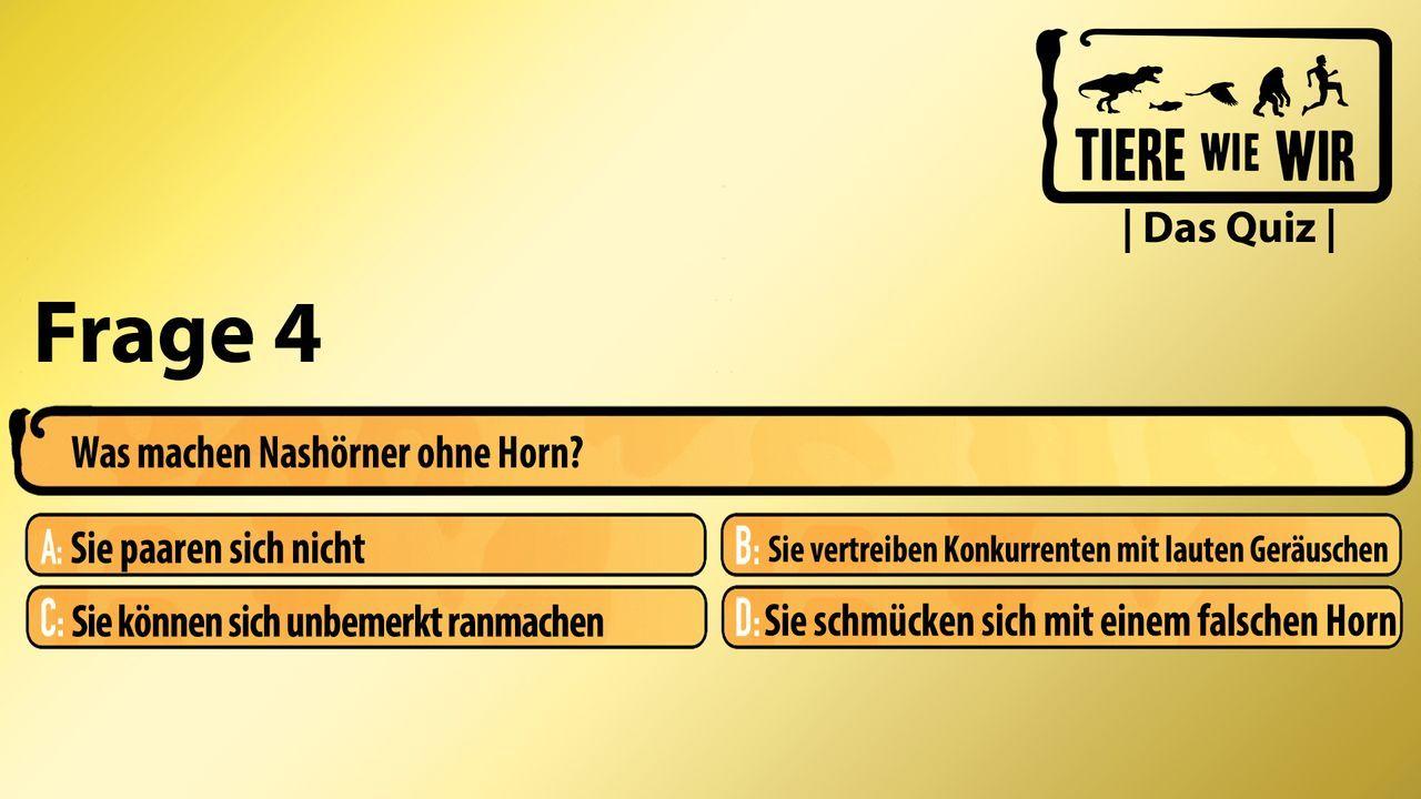 4_Frage