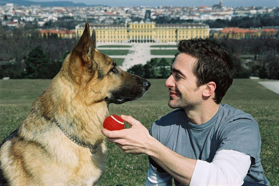 Marc (Alexander Pschill) und Rex erholen sich im Park ... - Bildquelle: Sat.1