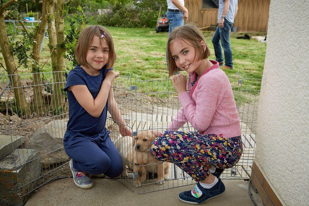 Sind von den Labrador Retriever Welpen begeistert: Sunny (l.) und Emely (r.) ... - Bildquelle: Guido Engels SAT.1
