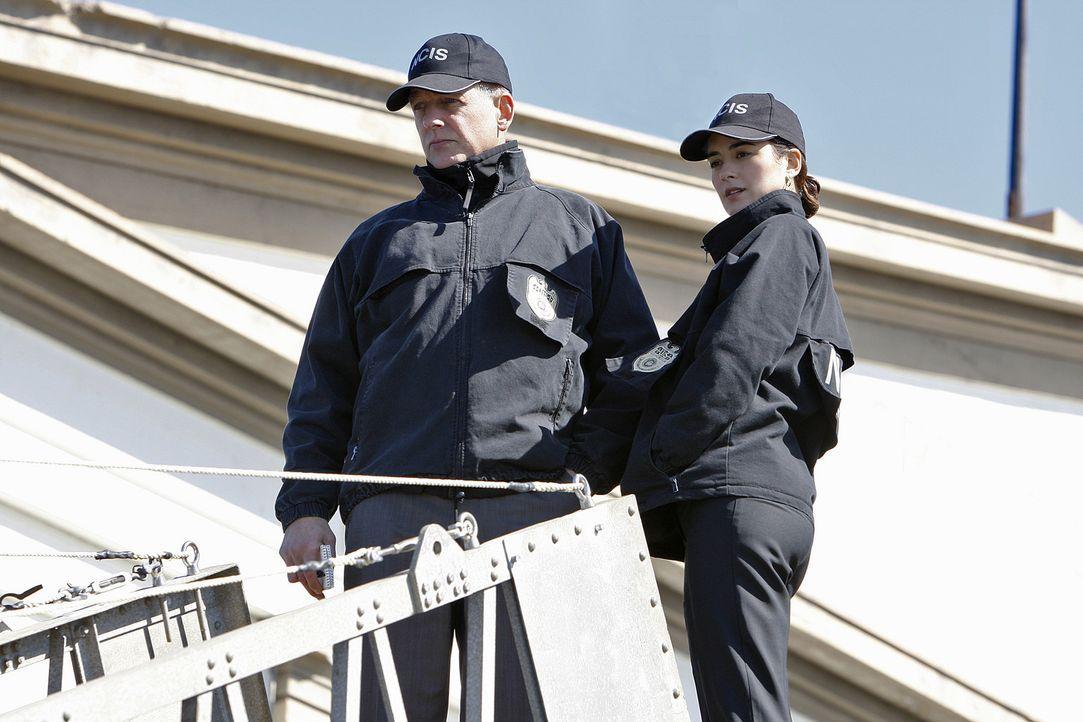 Um einem Mord aufzuklären, geben Gibbs (Mark Harmon, l.) und Ziva (Cote de Pablo, r.) alles ... - Bildquelle: CBS Television